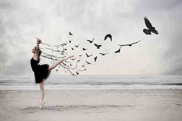 bailarina pájaro